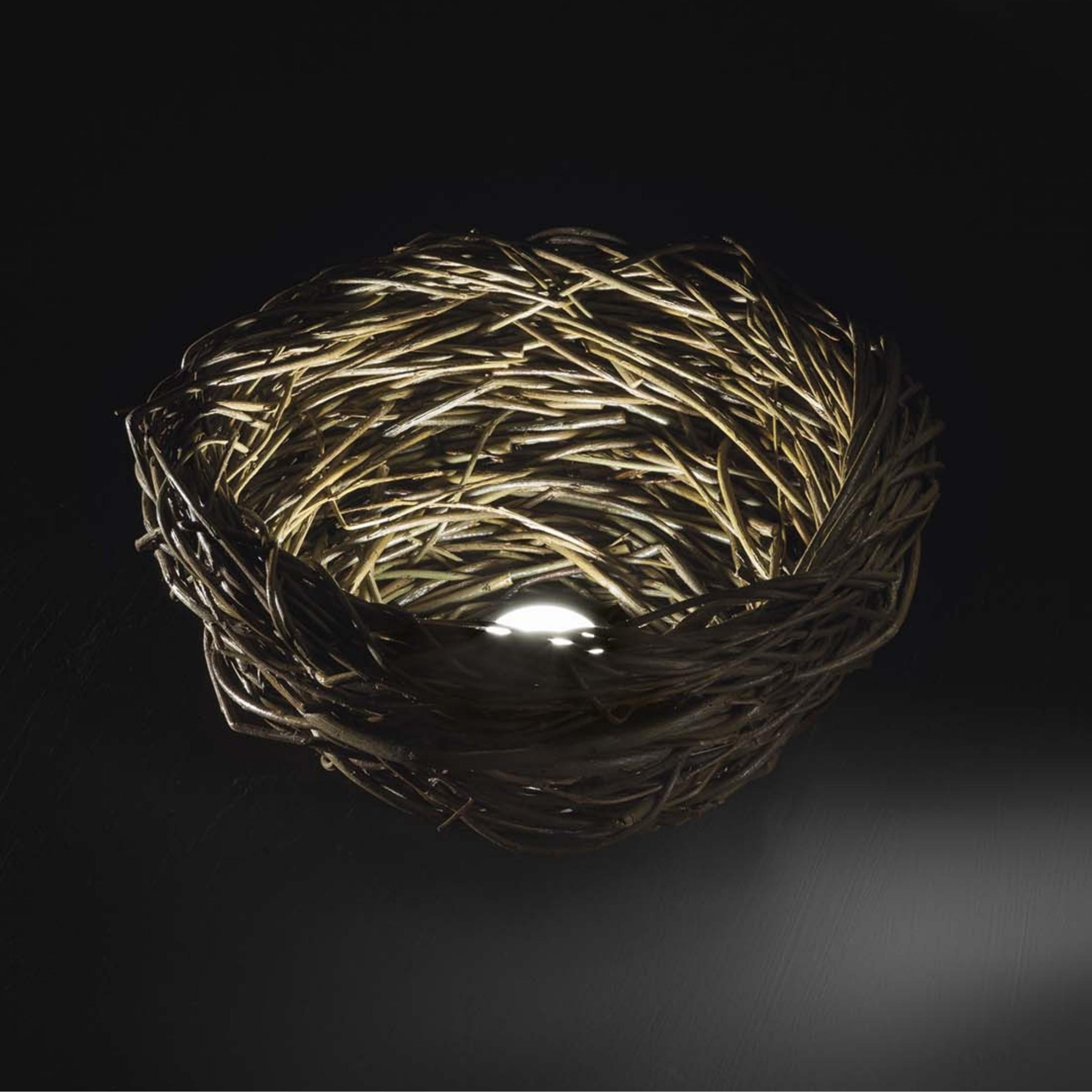 Lampy Nest